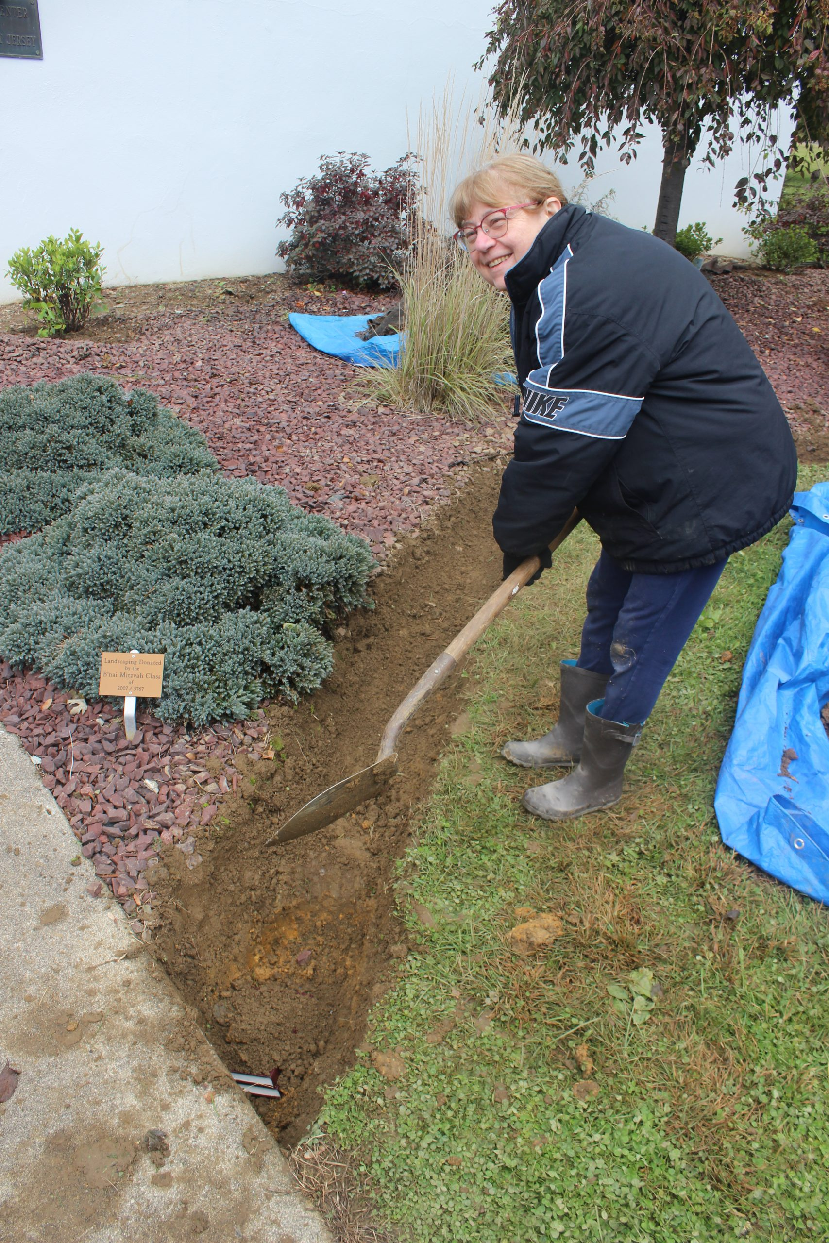 2018-10-28 Iris Planting Daffodils